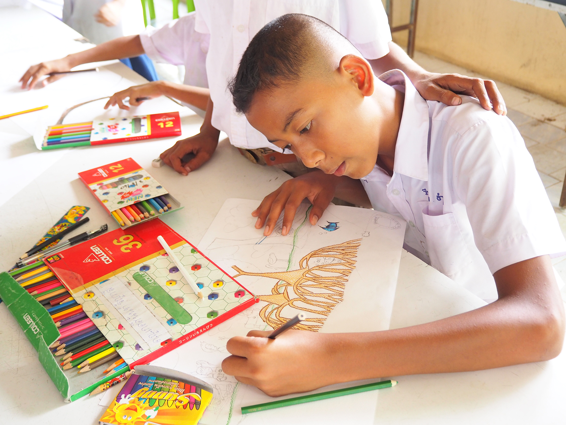 mangrove-action-project-kids-free-art-contest-2020